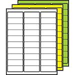 "Colored Multipurpose Processing Labels 1"" x 2-5/8"""